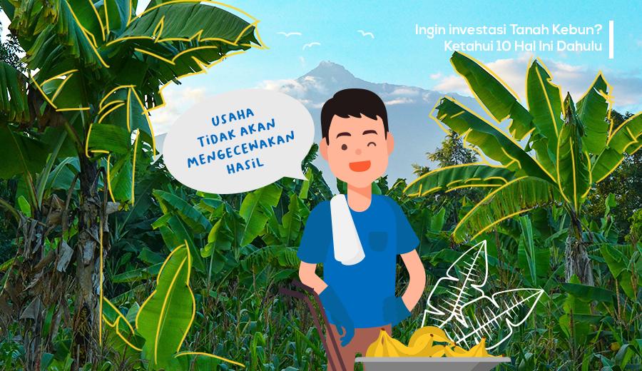 Memahami lebih dalam tentang Investasi lahan kebun agar tidak salah investasi.
