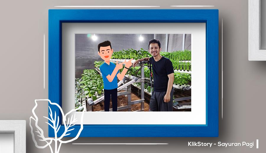 Sayuran Pagi, Bisnis Sayuran Hidroponik yang Berawal dari Iseng